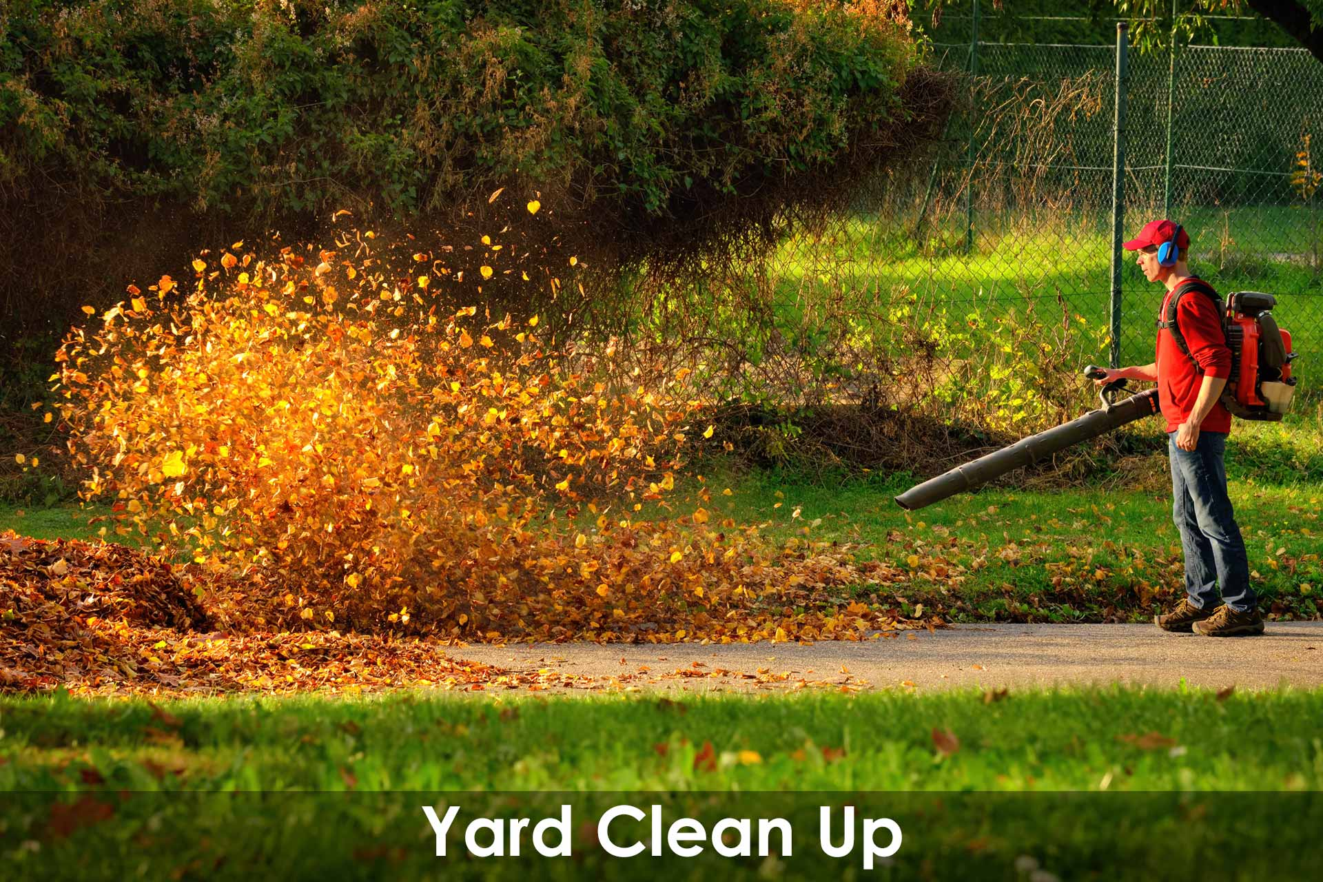 fall leaf clean up u0026 yard clean up of lawns and gardens oakville